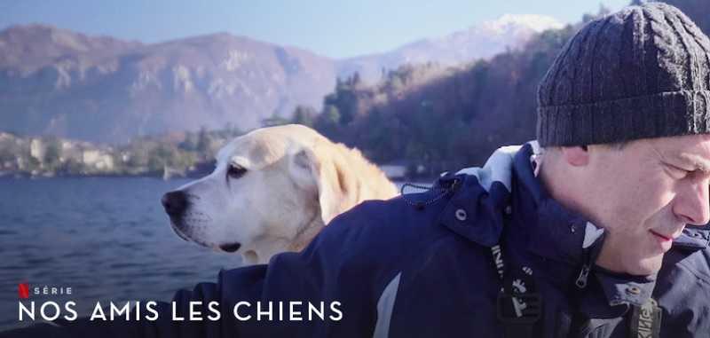 nos amis les chiens saison 2