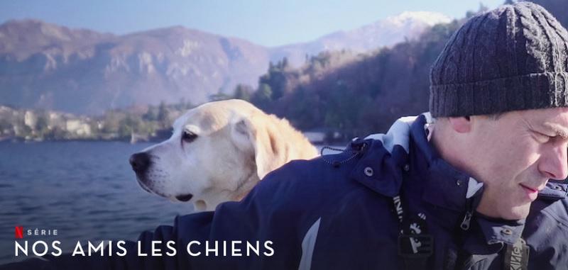 nuestros amigos los perros temporada 2